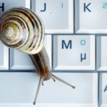 snail on laptop